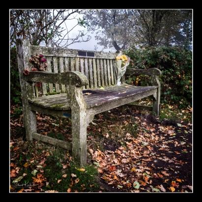 Fuji X-Pro2: Lickey Hills Park, England